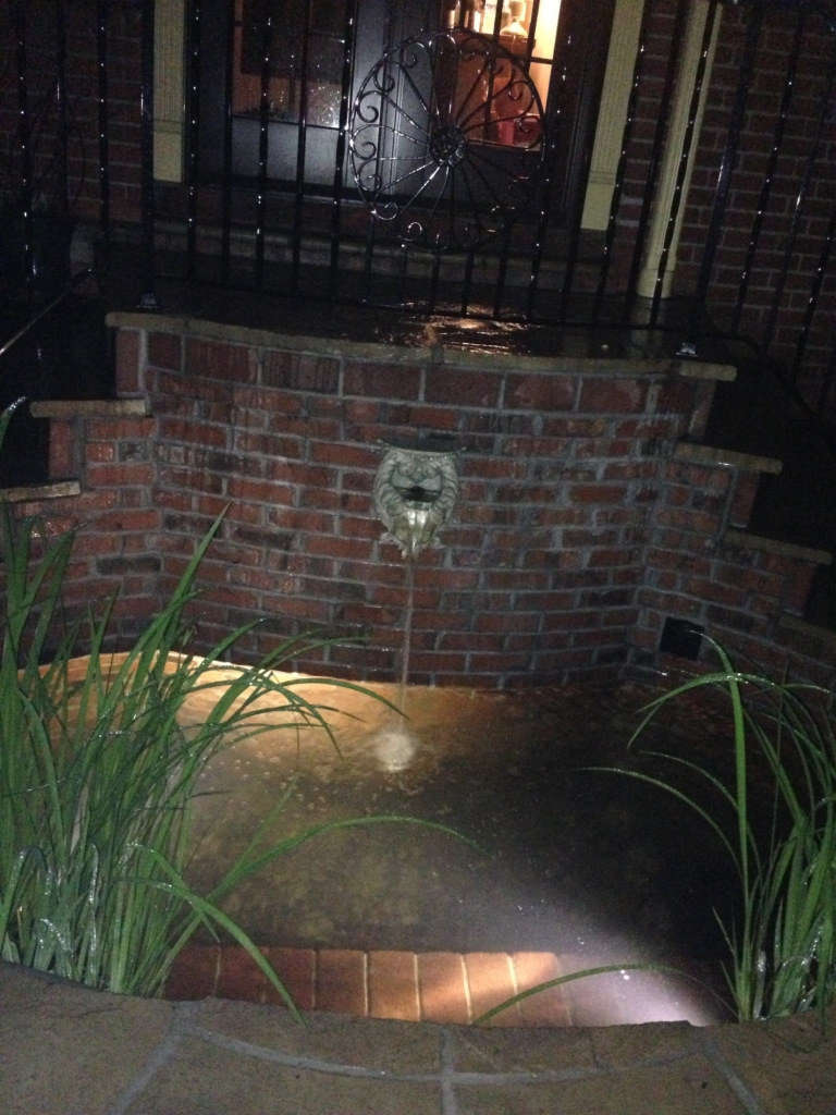 The Pond and Stairs