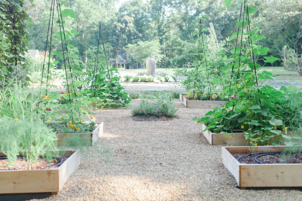 Potager Inspired Vegetable Garden