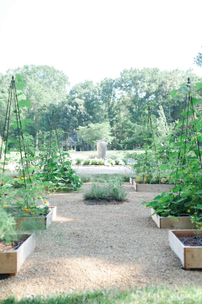 Symmetry Within The Garden