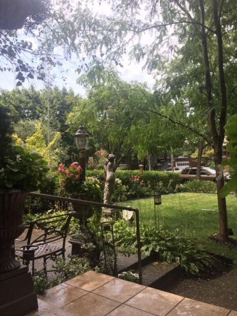 Garden Oasis front yard