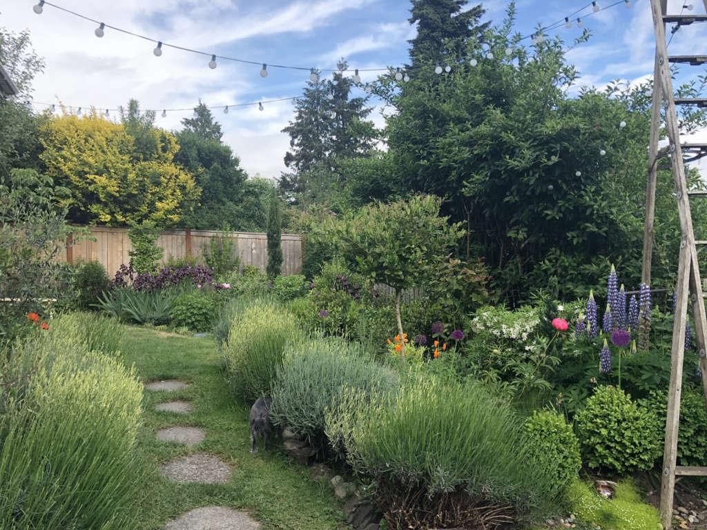 Pathway from patio to secret garden