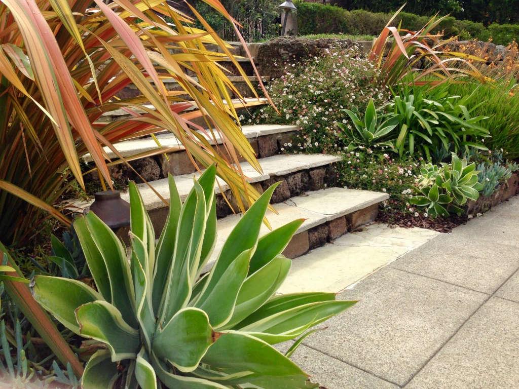 French Vanilla Limestone Steps and Walkways.