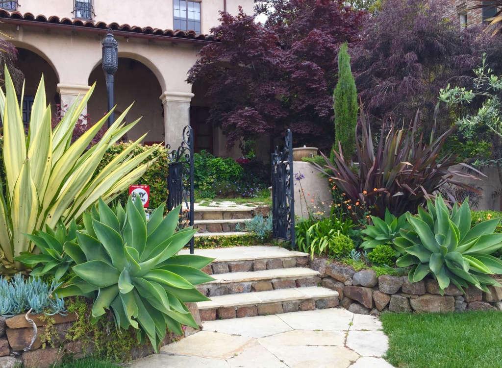 French Vanilla Limestone Steps Lead to Courtyard