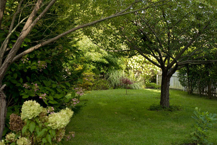 Buffer Garden in Fall