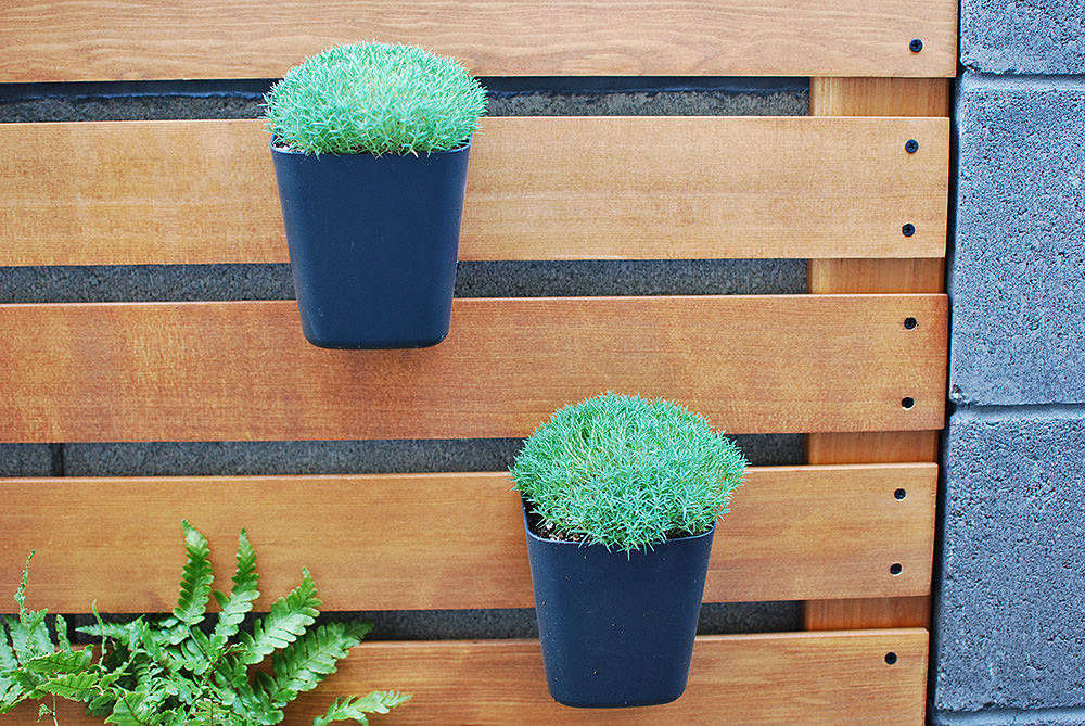 Plant wall with Ikea planter hacks.