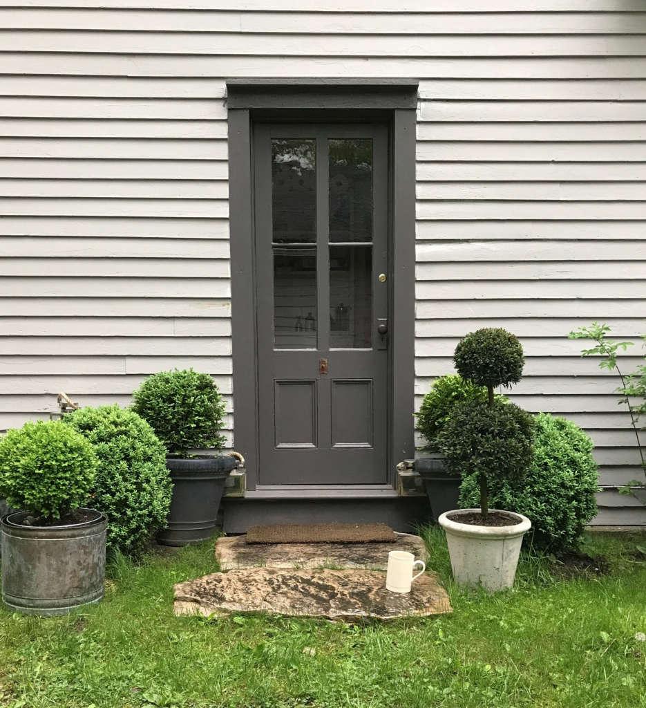 Back Door Boxwoods