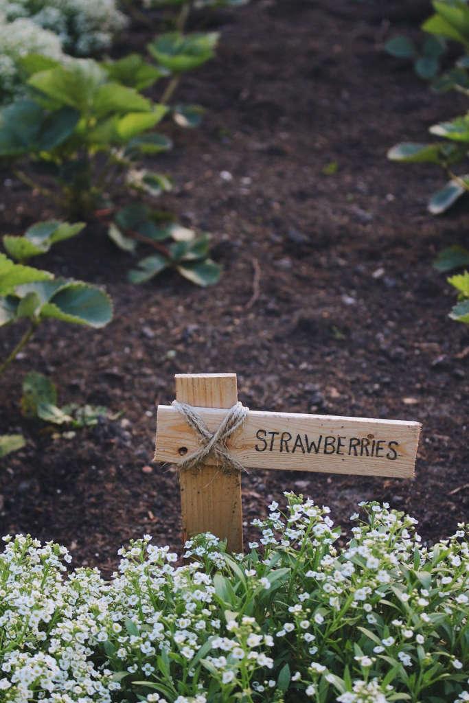 Rustic Colonial Garden Markers