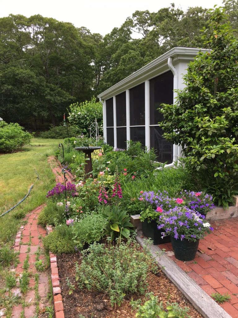 garden along the screened porch
