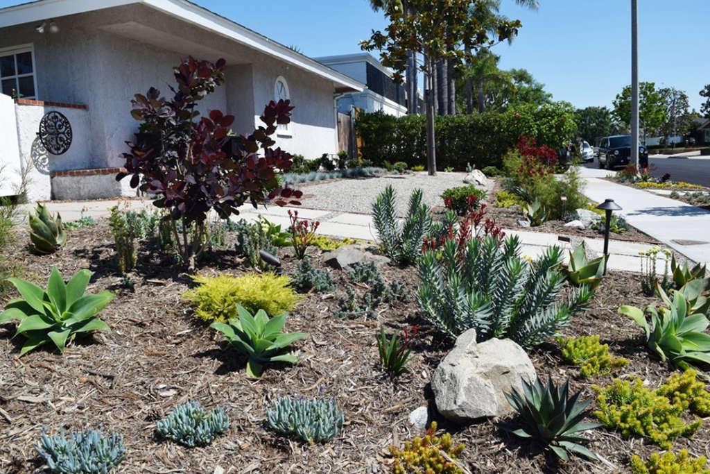 Newport Beach Front Yard