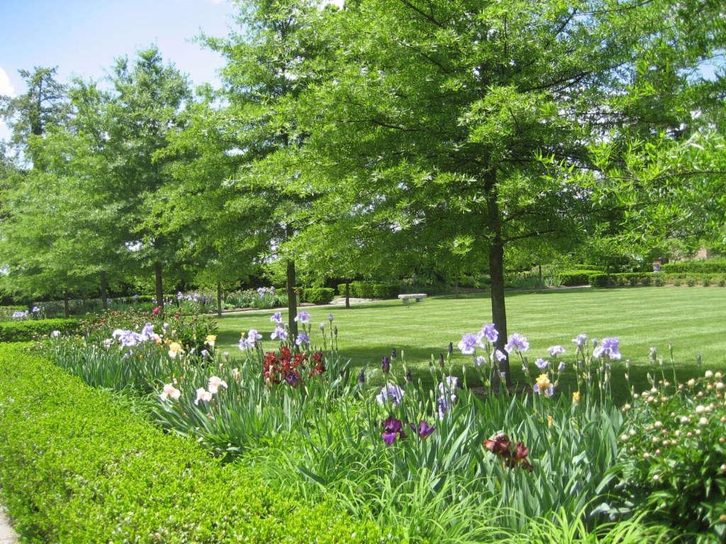 Event Lawn