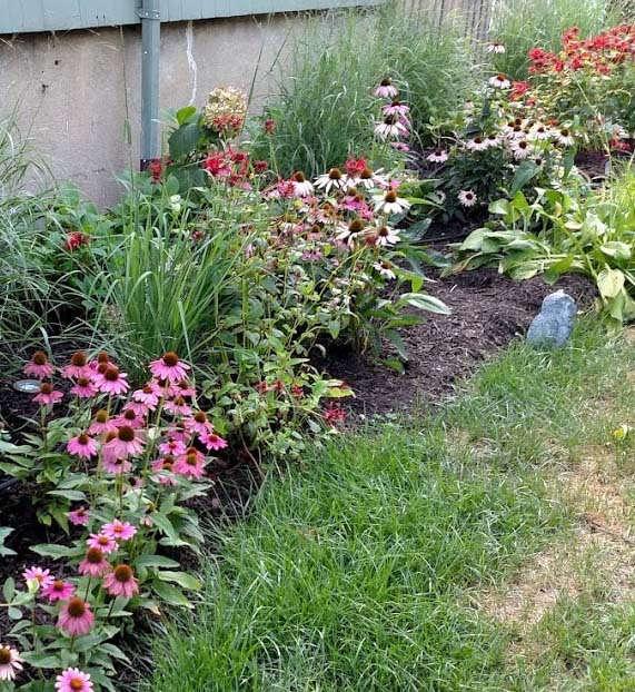 sustainable_garden_07.jpg