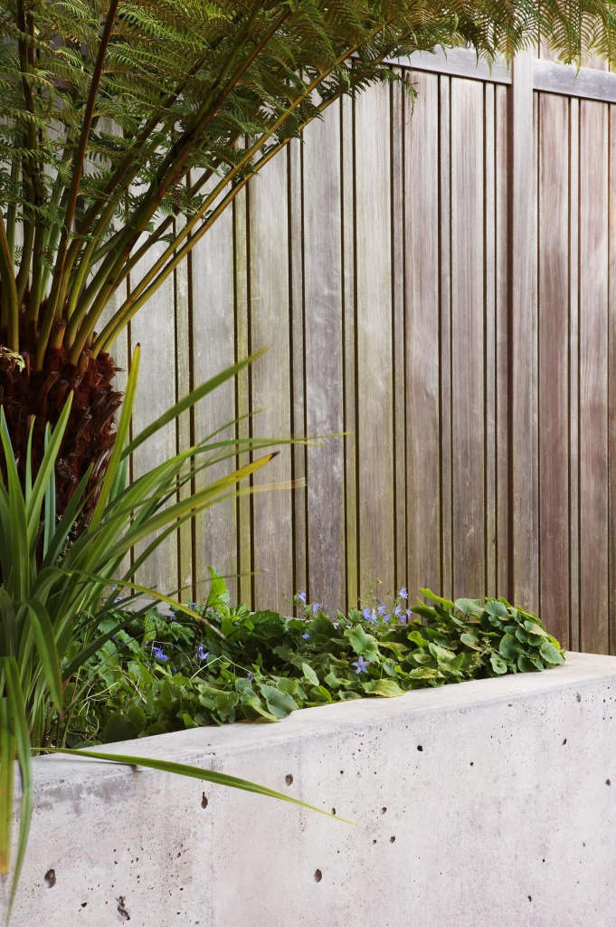 Wood, Concrete and Plantings