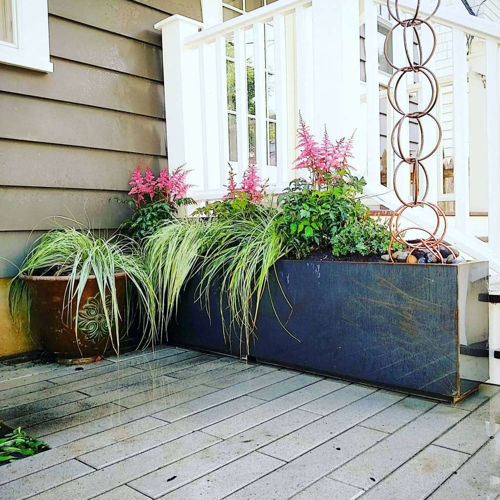 back_patio_plantes_2016.jpg