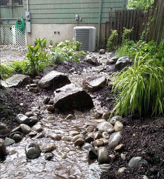 sustainable_garden_03.jpg