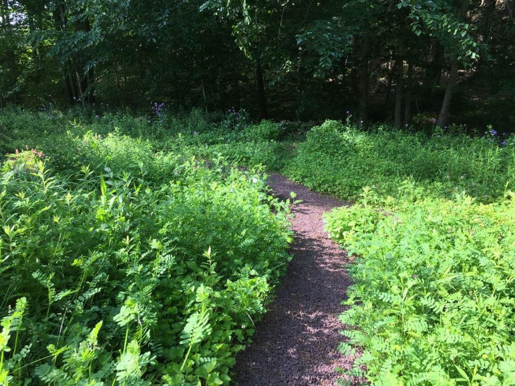 Pea gravel paths