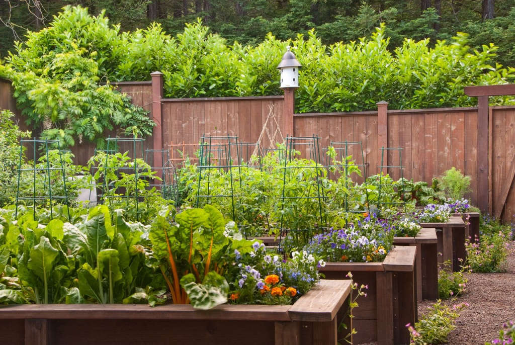 Regal Redwood Grove - Edibles Garden