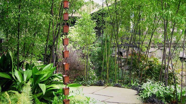 Robert Edson Swain - Aboretum Landmark Garden 2