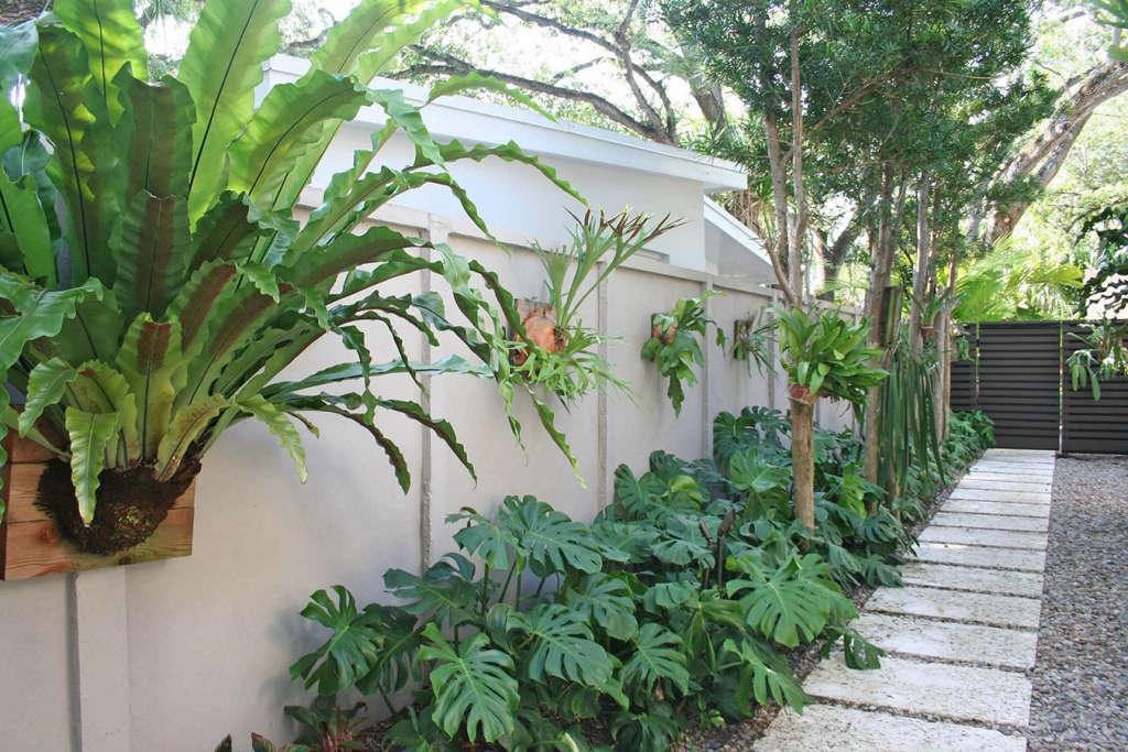 Staghorn Gallery | Oak Garden at Silver Bluff | Miami, Florida
