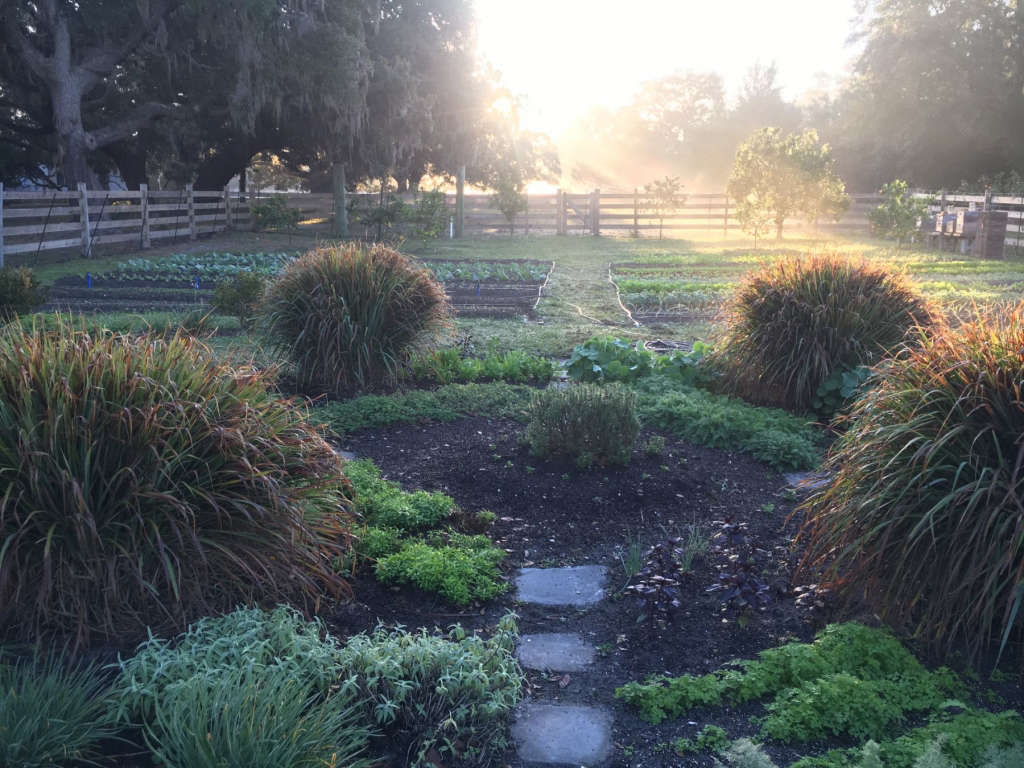 Herb Garden and Citrus Orchard