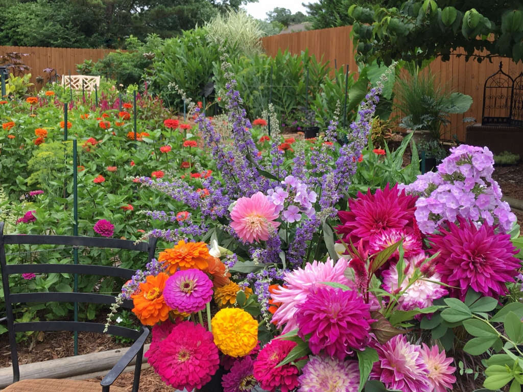 Cut Flower/ Bog/ Pollinator Garden