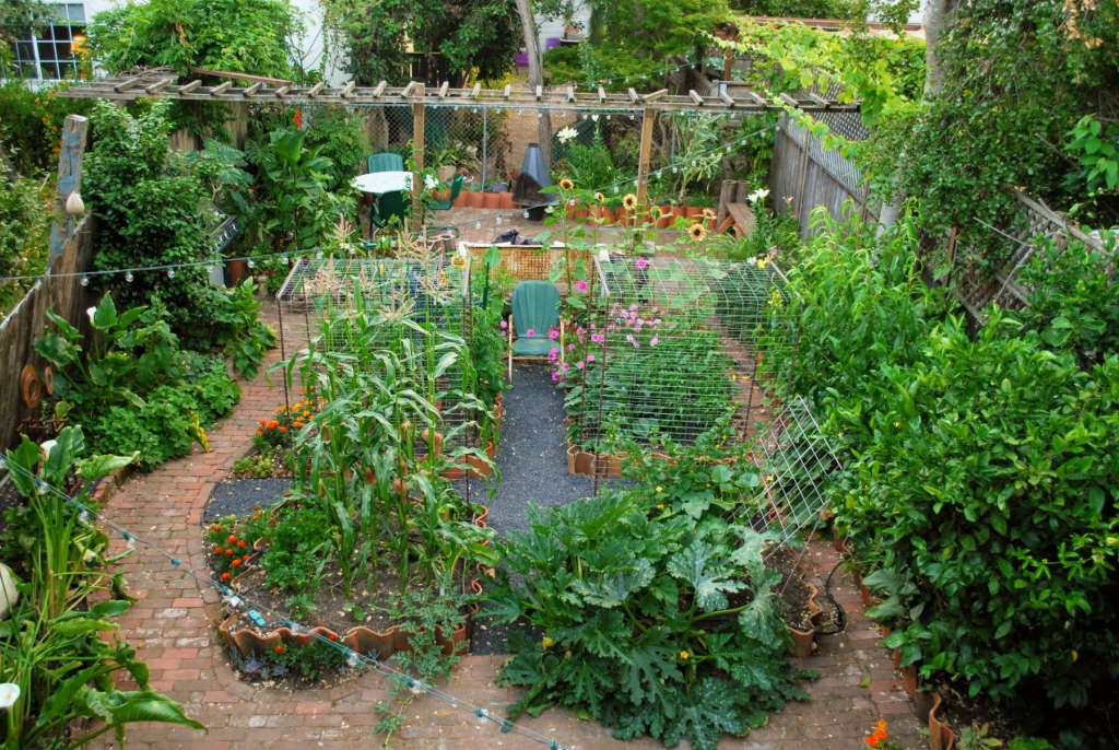 Meade House Garden from above