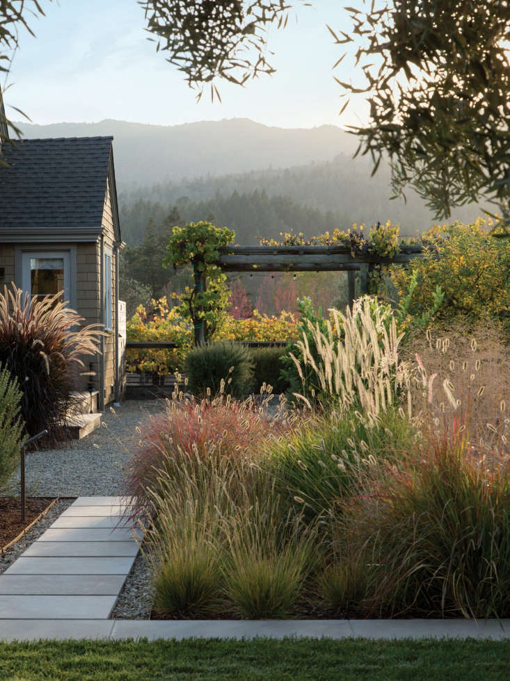 For more of this garden, see Vineyard Haven: A Napa Valley Garden That Belongs to the Land. Photograph by Mathew Millman courtesy of landscape architect Scott Lewis.